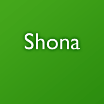 Shona talking dictionary
